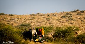17th Nov 2012 - Wildlife + Star Gazing, Kirthar National Park.